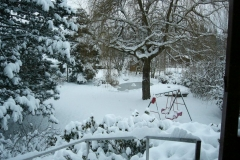 k-Garten-Winter 2010 (6)